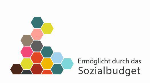 Logo Sozialbudget